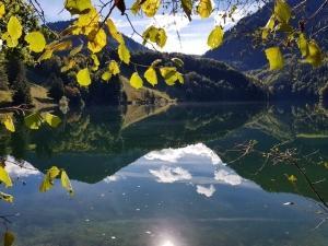 אגם בשוויץ - השתקפות