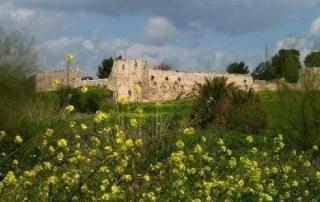 פארק אפק ומבצר אנטיפטרוס