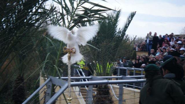 חג ההתגלות | חג האפיפניה
