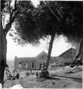 חוות-סגרה-1947