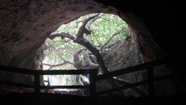 נחל המערה | מערת התאומים