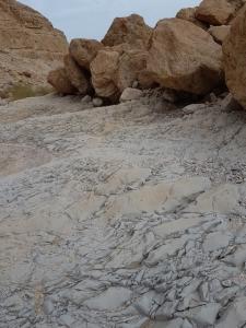 משטחי סלע בנחל קדם