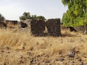 הכפר יהודיה