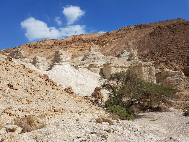 מעין בוקק לנווה זהר שביל ישראל החדש