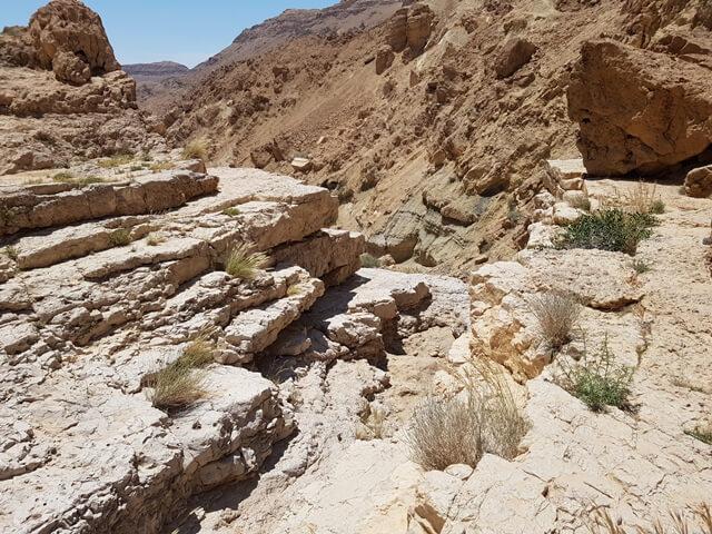 מנחל פרס לנחל צפית - שביל ישראל חדש