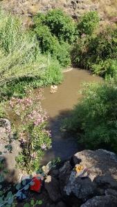 בריכה בנחל