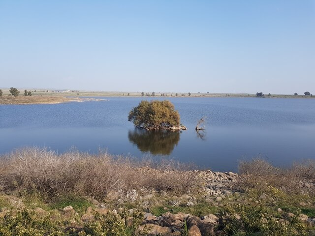 שביל הגולן מאום אל דנאיר לחניון דליות