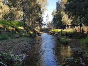 שביל הגולן - פלג מים