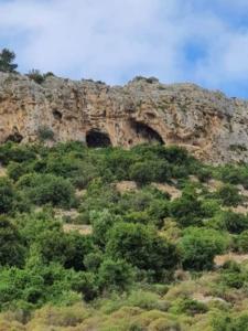 מערות ברכס הכרמל